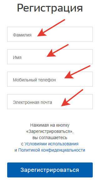 Поля для ввода данных